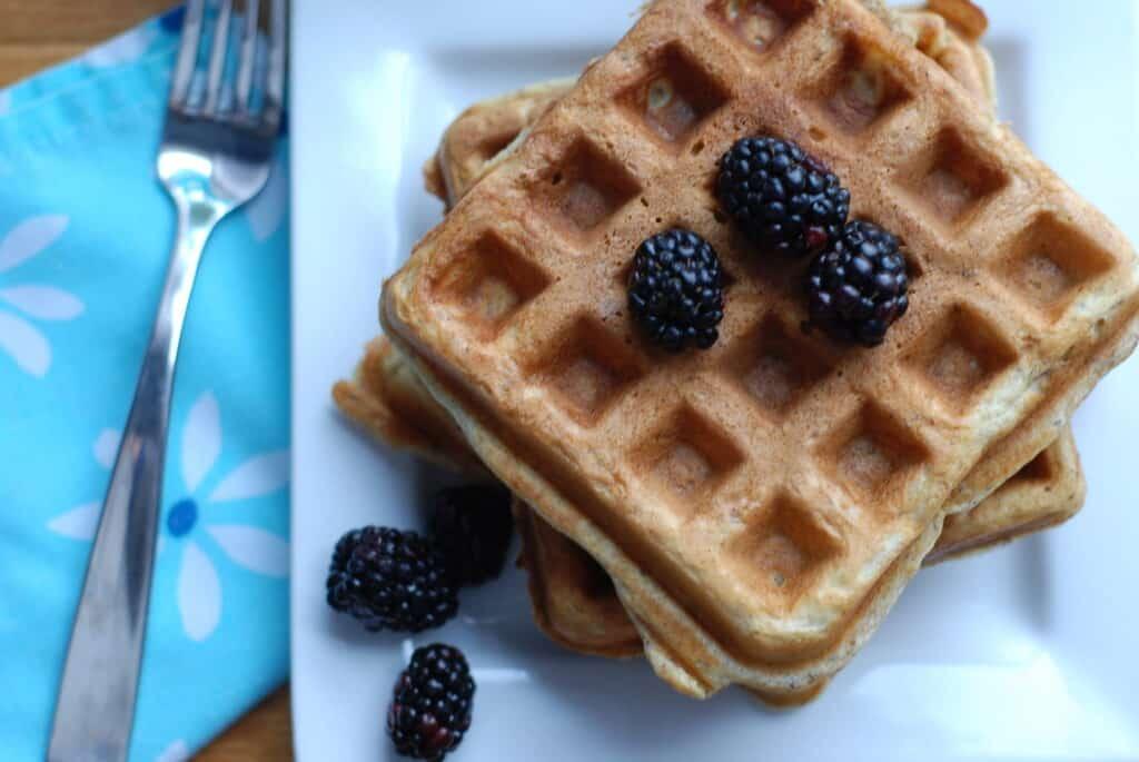 Yogurt & Flaxseed Waffles from Real Mom Nutrition