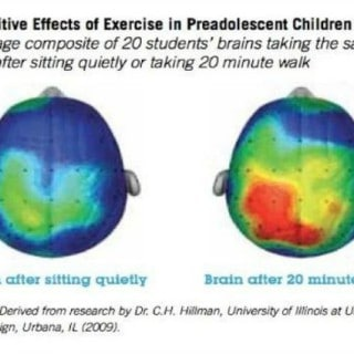 "Why Kids Need ""Brain Breaks"" by Real Mom Nutrition"