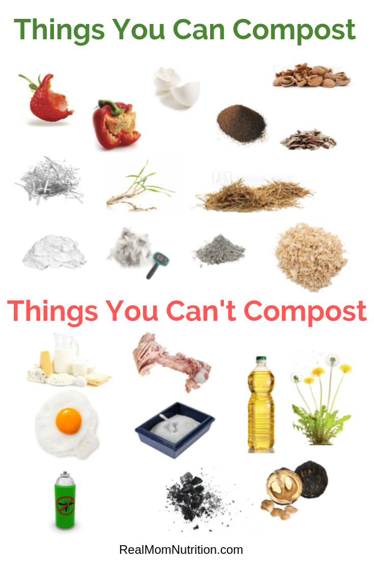 What you can compost