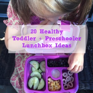 20 Healthy Toddler & Preschooler Lunchbox Ideas