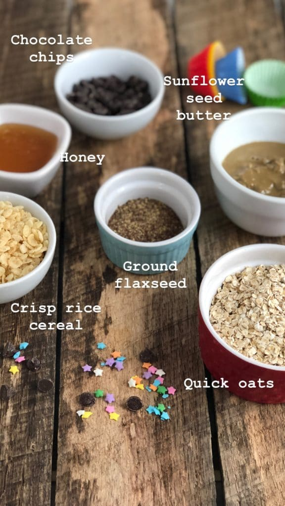 Ingredients for Nut Free Snack Balls