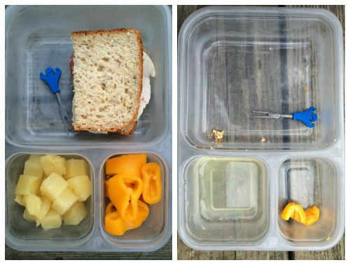 What We Ate Wednesday -- Real Mom Nutrition