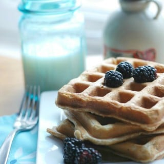 Yogurt & Flaxseed Waffles